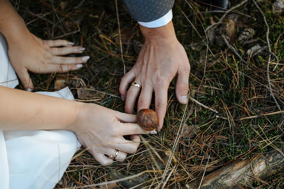 sesja z grzybami ślub