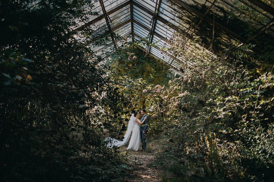 sesja ślubna w szklarni