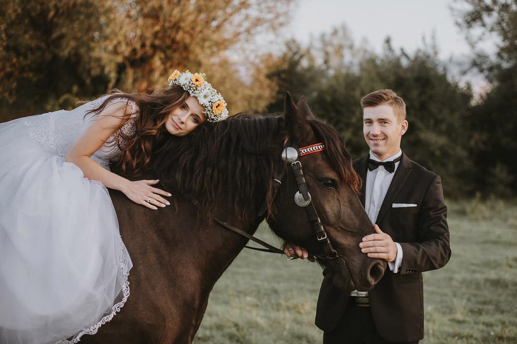 sesja ślubna na koniach